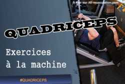 Exercices de quadriceps a la machine