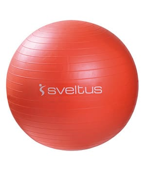 Swiss Ball (3 tailles)
