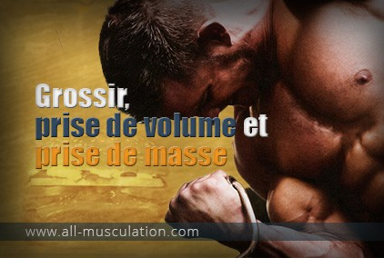 BULK XXX de Iron Muscle - Gainer Musculation