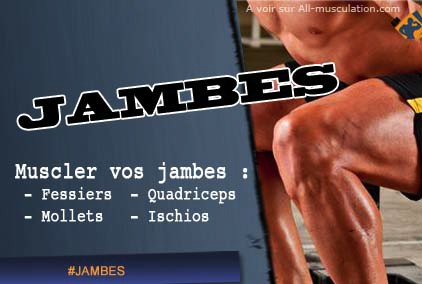 Comment muscler les jambes