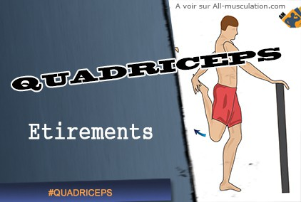Etirements des quadriceps