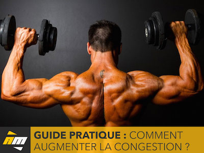 Guide pratique augmenter la congestion projet clos for Guide musculation