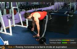 Variantes du rowing horizontal