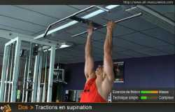 Variantes des Tractions supination