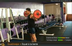Squat barre