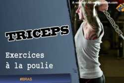 Exercices de triceps a la poulie