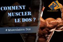 Comment muscler le dos ?