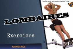 Exercices des lombaires