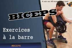Exercices de biceps a la barre