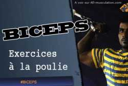 Exercices biceps a la poulie