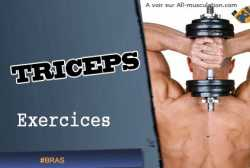 Exercices des Triceps