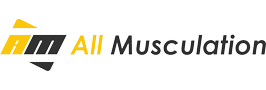All-musculation