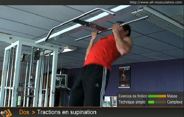 Fin de l'exercice : Tractions supination