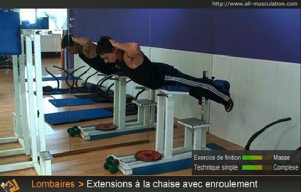 Fin Extensions Lombaires Chaise