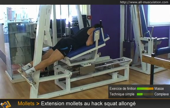 Début : Extensions mollets au hack squat allongé