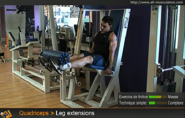 Fin de l'exercice : Leg extension