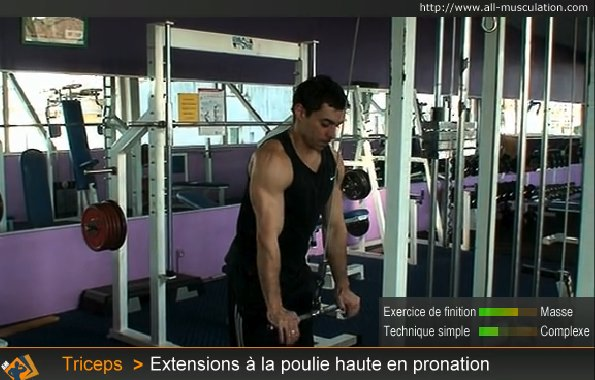 Fin de l'exercice : Extension triceps poulie haute pronation
