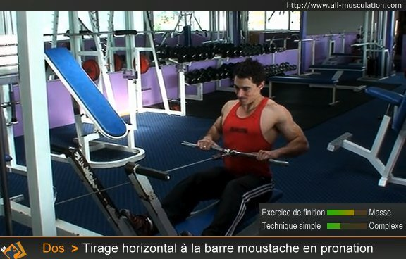 Fin du tirage horizontal en pronation à la barre moustache