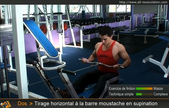 Fin du tirage horizontal en supination à la barre moustache