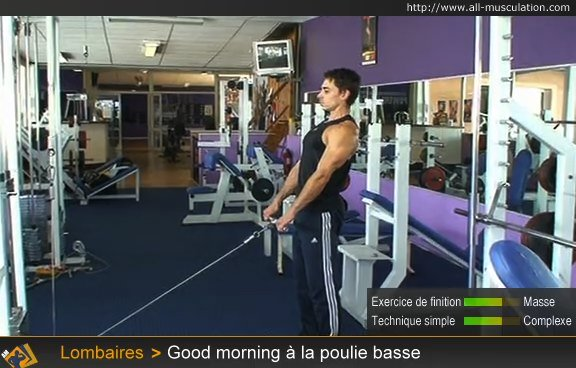 Début de l'exercice : good-morning poulie basse