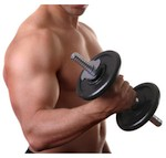 Exercices de Biceps
