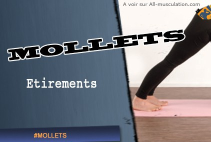 Etirements des mollets