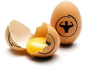 Oeuf musculation