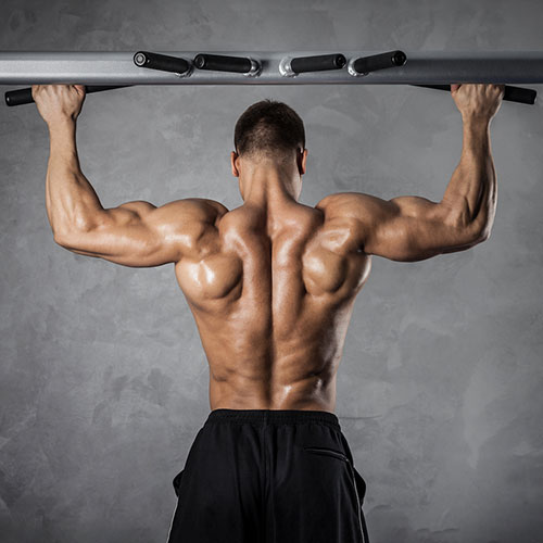 Biceps quel mat riel de musculation utiliser for Exterieur biceps