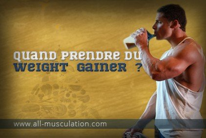 quand prendre du weight gainer